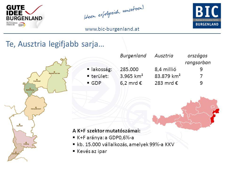www.bic-burgenland.at Kutatás és fejlesztés Burgenlandban Tényadatok  K+F a GDP arányában : 0,6%(egész Ausztria: 2,76%)  2010-re kitűzött cél: 1,2%(egész Ausztria : 3,76%)  K+F kiadások: 36 millió €  K+F intézmények Burgenlandban Potenciál  új alapítású vállalkozások aránya: 7,4%  sikeres szabadalmak aránya: 72%  érettségizettek arányaitt a legmagasabb  alkalmazottak száma vállalatalapításnál 2,6 (=Ausztriában az első hely)