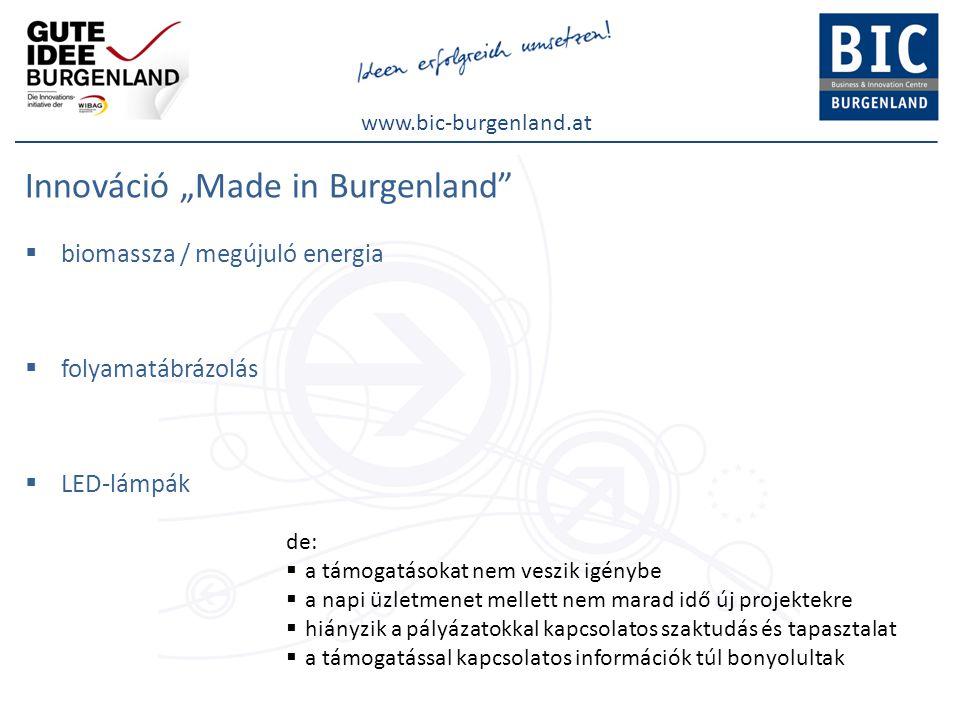 """www.bic-burgenland.at Innováció """"Made in Burgenland  biomassza / megújuló energia  folyamatábrázolás  LED-lámpák de:  a támogatásokat nem veszik igénybe  a napi üzletmenet mellett nem marad idő új projektekre  hiányzik a pályázatokkal kapcsolatos szaktudás és tapasztalat  a támogatással kapcsolatos információk túl bonyolultak"""