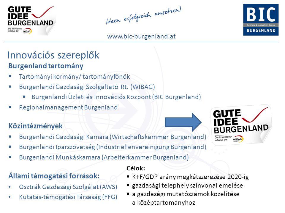 www.bic-burgenland.at Innovációs szereplők Burgenland tartomány  Tartományi kormány/ tartományfőnök  Burgenlandi Gazdasági Szolgáltató Rt. (WIBAG) 