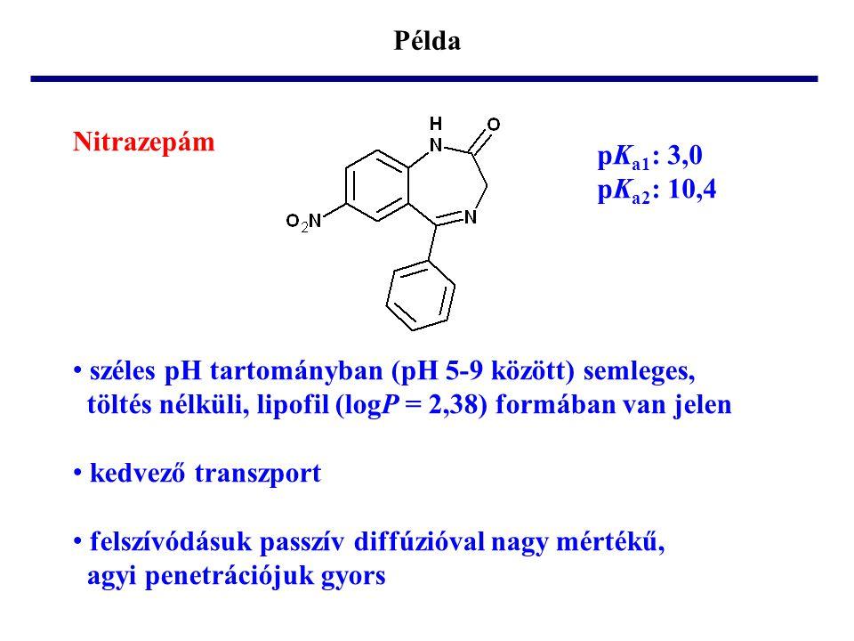 Példa Nitrazepám pK a1 : 3,0 pK a2 : 10,4 • széles pH tartományban (pH 5-9 között) semleges, töltés nélküli, lipofil (logP = 2,38) formában van jelen • kedvező transzport • felszívódásuk passzív diffúzióval nagy mértékű, agyi penetrációjuk gyors