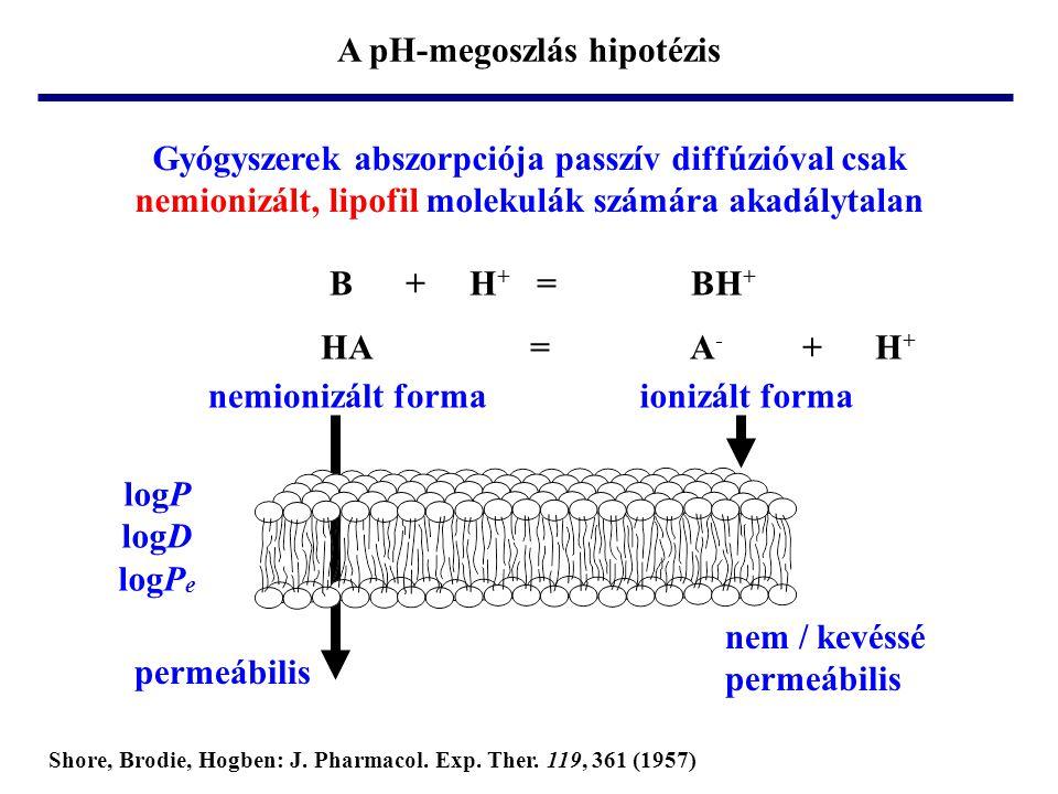 Gyógyszerek abszorpciója passzív diffúzióval csak nemionizált, lipofil molekulák számára akadálytalan nemionizált formaionizált forma permeábilis nem