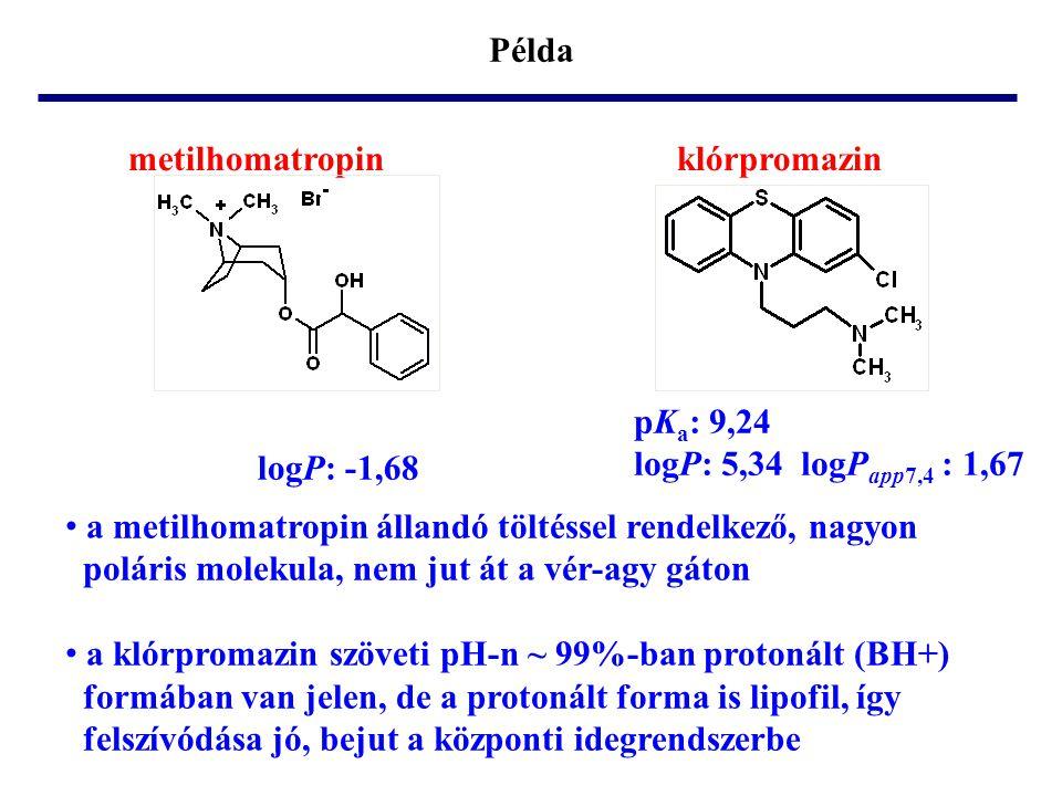 Példa metilhomatropin klórpromazin pK a : 9,24 logP: 5,34 logP app7,4 : 1,67 • a metilhomatropin állandó töltéssel rendelkező, nagyon poláris molekula
