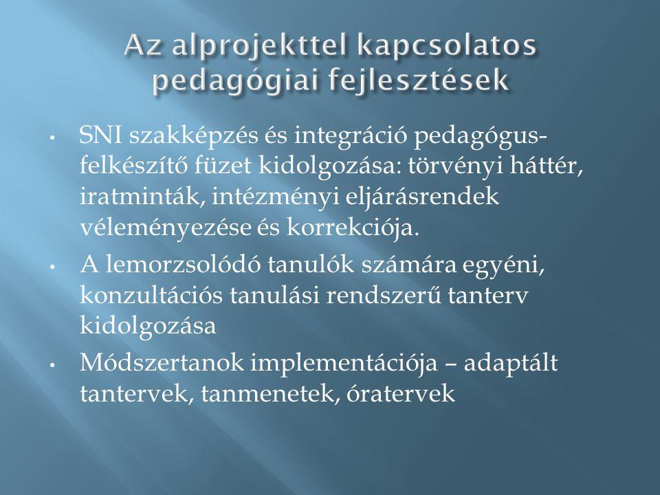 • SNI szakképzés és integráció pedagógus- felkészítő füzet kidolgozása: törvényi háttér, iratminták, intézményi eljárásrendek véleményezése és korrekciója.
