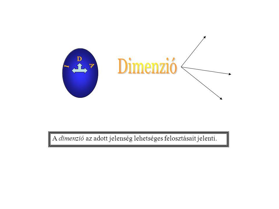 A dimenzió az adott jelenség lehetséges felosztásait jelenti.