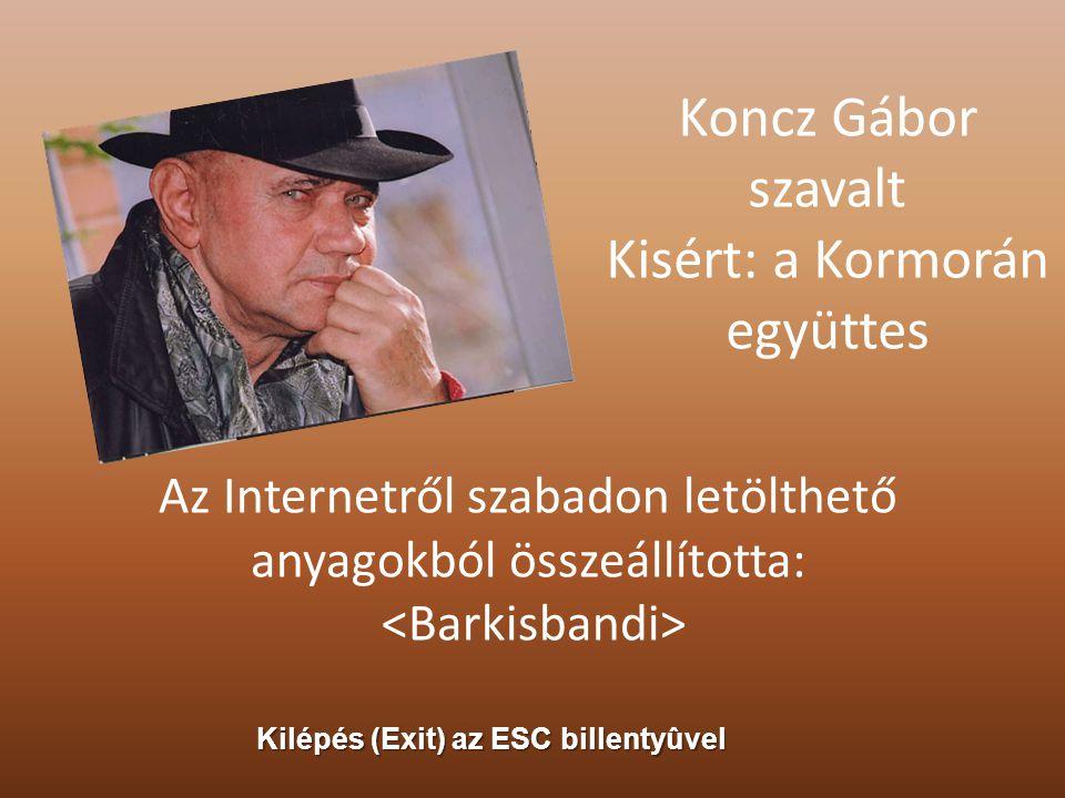 Magyar rónán, hegyen egy kiáltás zúg át: Nem engedjük soha! soha Árpád honát!