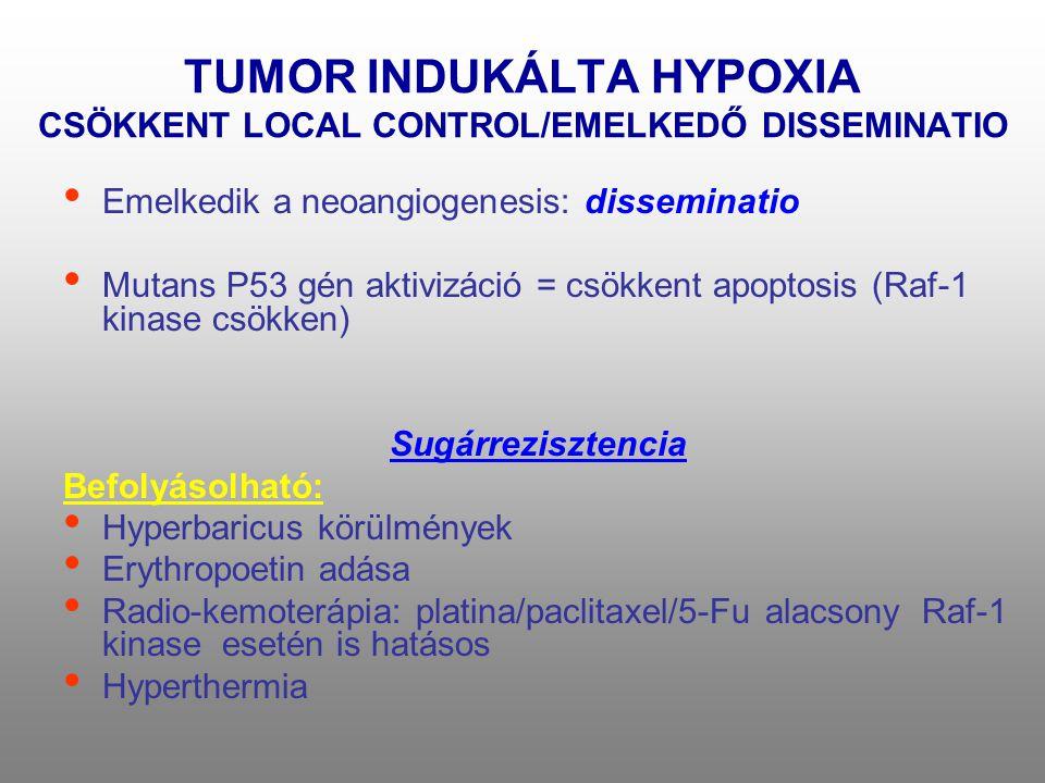 TUMOR INDUKÁLTA HYPOXIA CSÖKKENT LOCAL CONTROL/EMELKEDŐ DISSEMINATIO • Emelkedik a neoangiogenesis: disseminatio • Mutans P53 gén aktivizáció = csökke