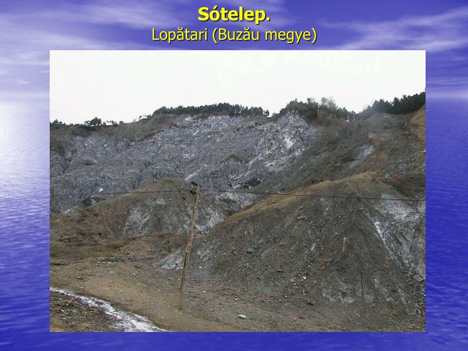 Sótelep. Lopătari (Buzău megye)