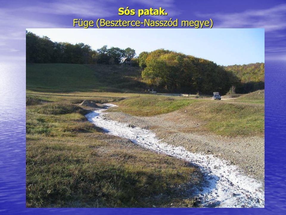 Sós patak. Füge (Beszterce-Nasszód megye)