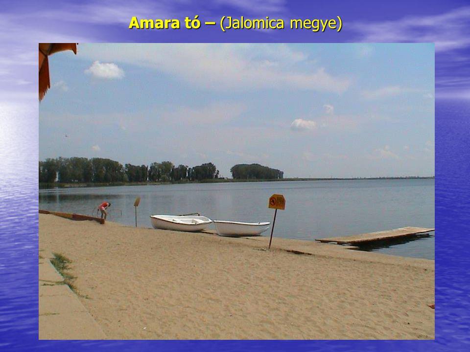 Amara tó – (Jalomica megye)