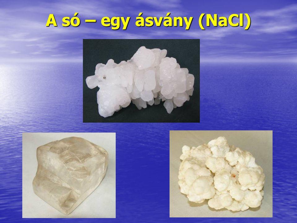 A só, az idő és az ember II. A só és az élet