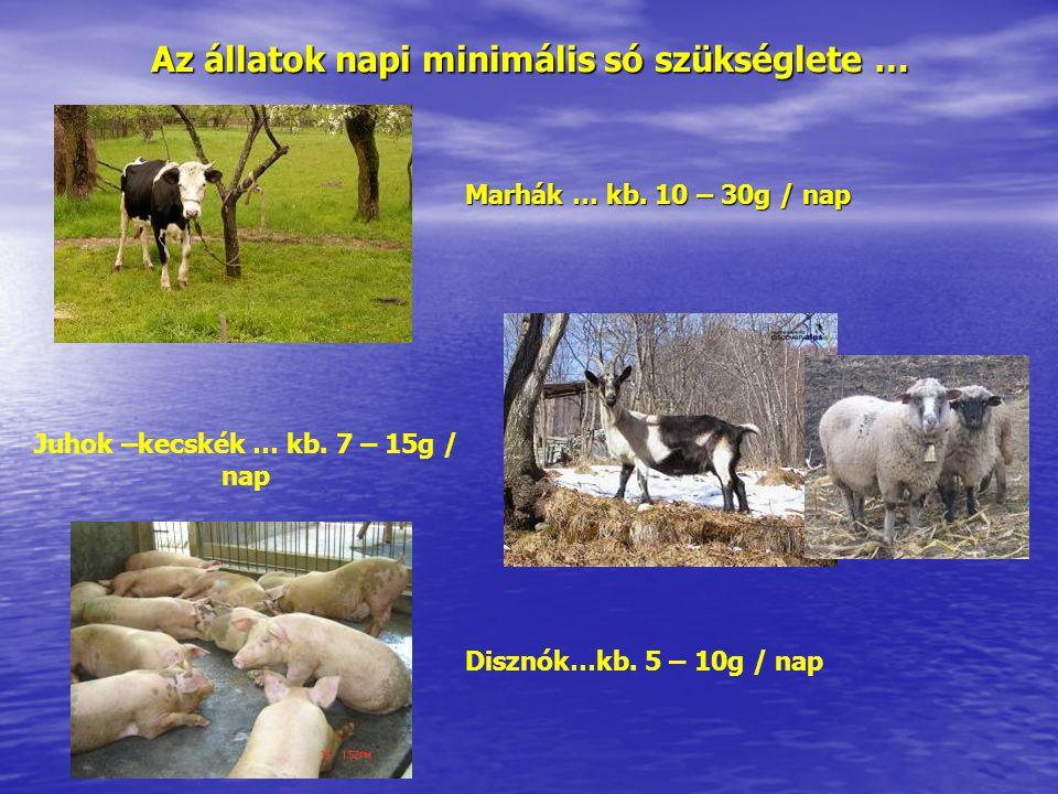 Az állatok napi minimális só szükséglete … Marhák … kb. 10 – 30g / nap Juhok –kecskék … kb. 7 – 15g / nap Disznók…kb. 5 – 10g / nap