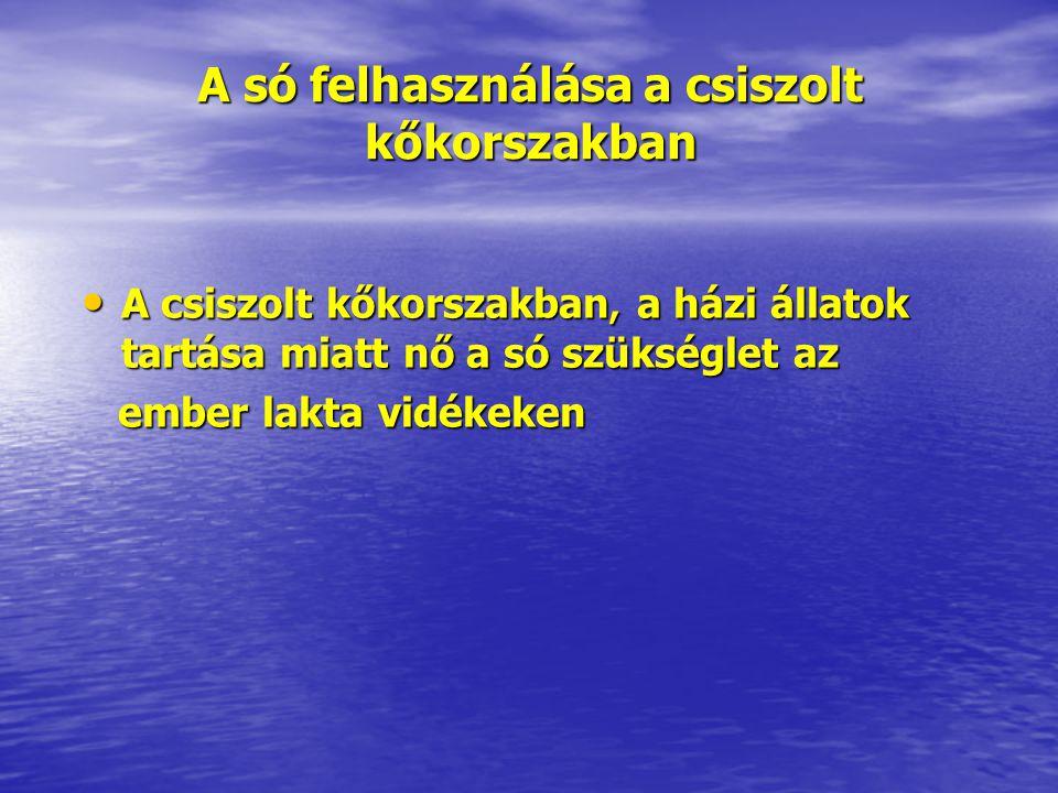 A só felhasználása a csiszolt kőkorszakban • A csiszolt kőkorszakban, a házi állatok tartása miatt nő a só szükséglet az ember lakta vidékeken ember l