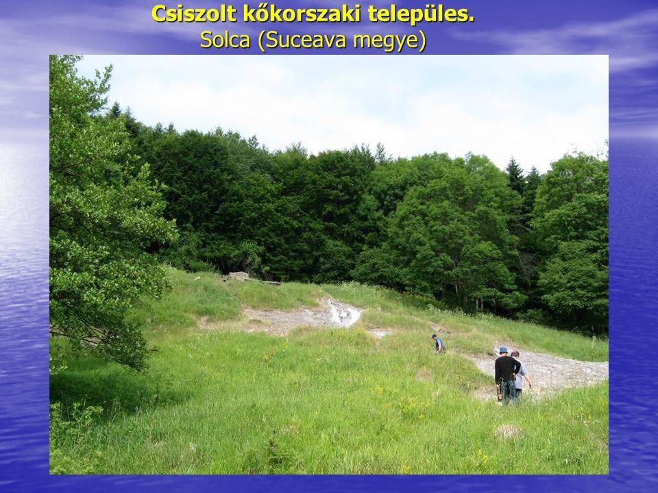 Csiszolt kőkorszaki települes. Solca (Suceava megye)