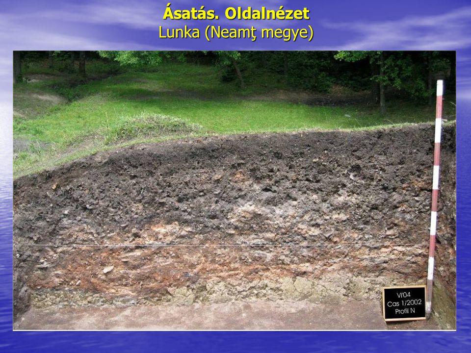 Ásatás. Oldalnézet Lunka (Neamţ megye)