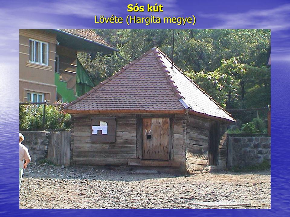 Sós kút Lövéte (Hargita megye)