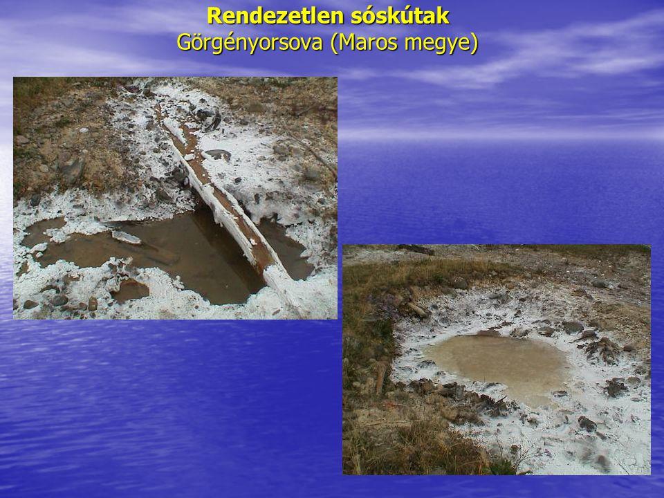 Rendezetlen sóskútak Görgényorsova (Maros megye)