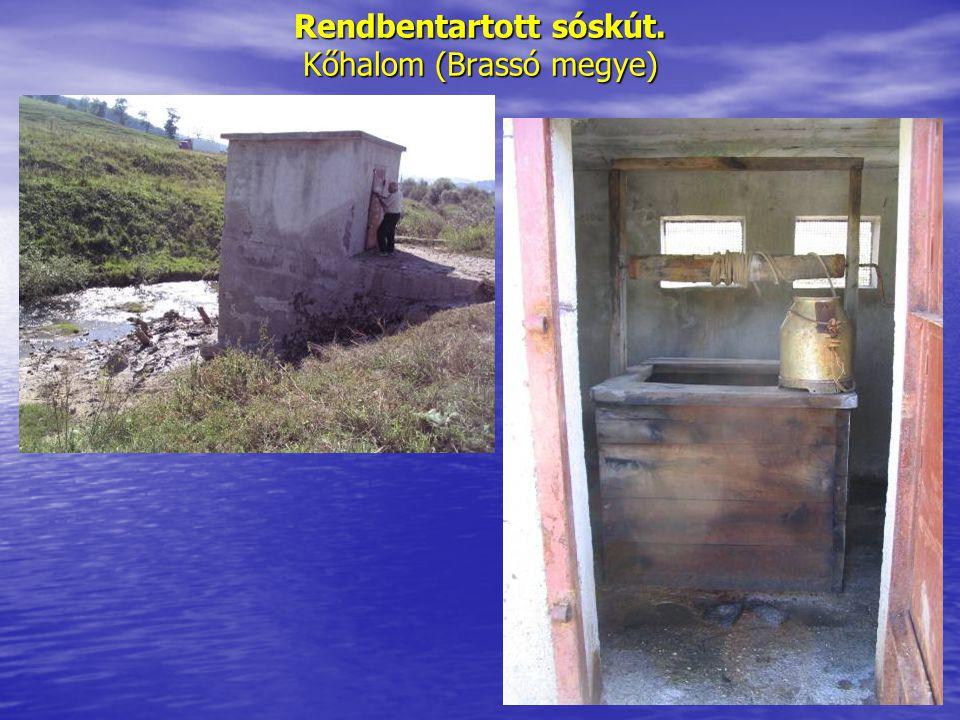 Rendbentartott sóskút. Kőhalom (Brassó megye)