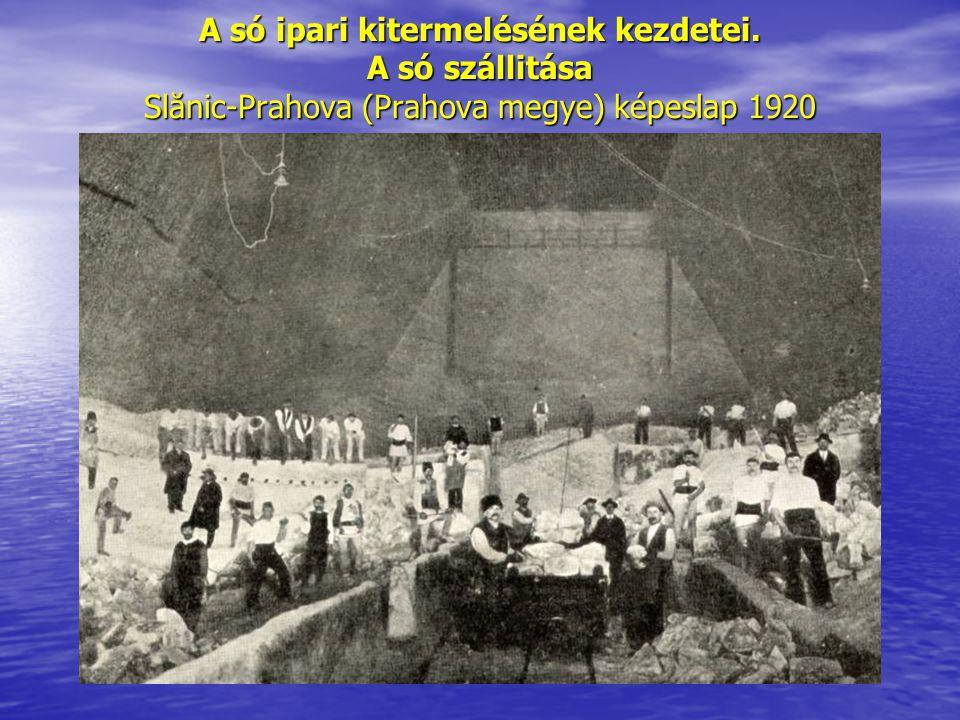 A só ipari kitermelésének kezdetei. A só szállitása Slănic-Prahova (Prahova megye) képeslap 1920