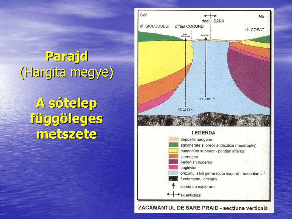 Parajd (Hargita megye) A sótelep függöleges metszete