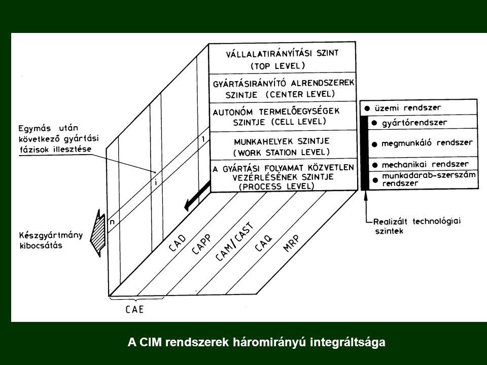 Funkcionális integráció c) a gyártáshoz kapcsolódó tevékenységek összehangolását vizsgálja: lényegében az egymás mellett működő vállalati funkciók integrálásának lehetőségeit méri fel.
