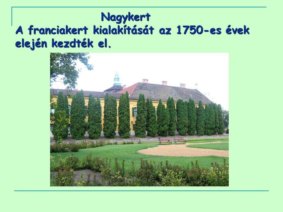 Nagykert A franciakert kialakítását az 1750-es évek elején kezdték el.