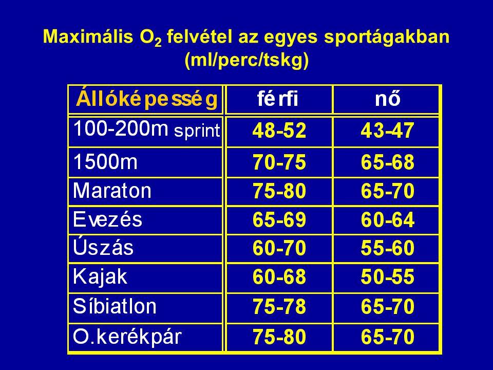 Maximális O 2 felvétel az egyes sportágakban (ml/perc/tskg)