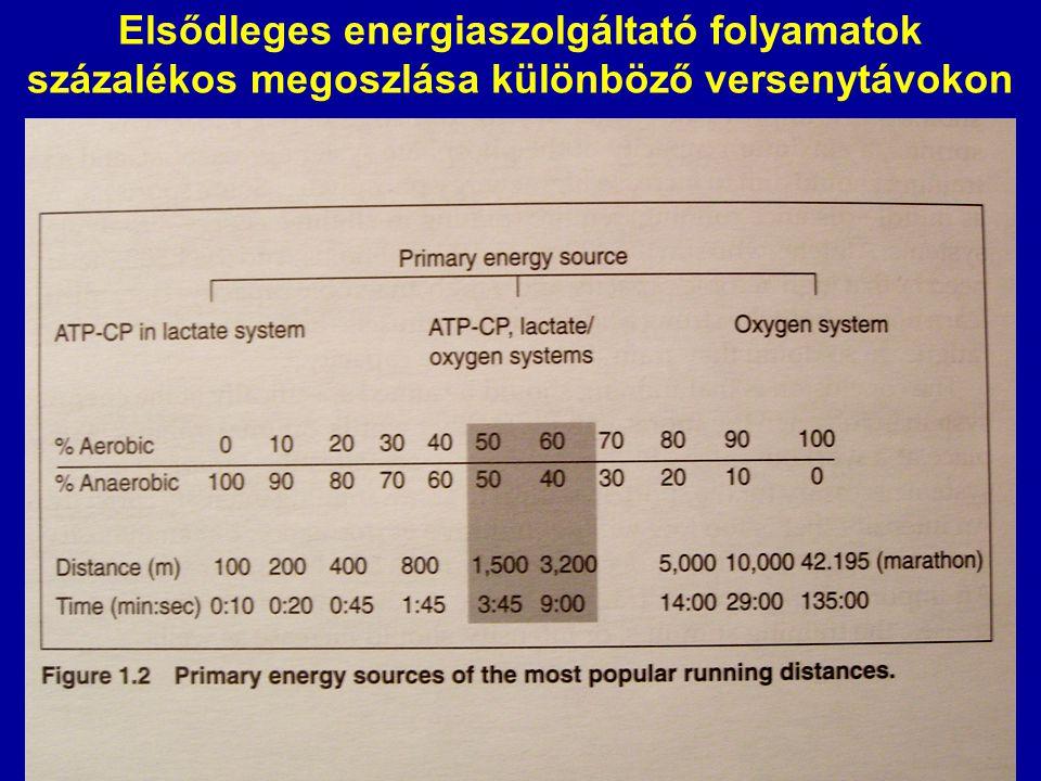 Energiaszolgáltató folyamatok •Anaerob (izom tömeg) rövid ideig tartó magas intenzitás - alactacid ( ATP, kreatinfoszfát) - lactacid (anaerob glikolízis) •Aerob (keringés, légzés) hosszú ideig tartó közepes vagy alacsony intenzitás