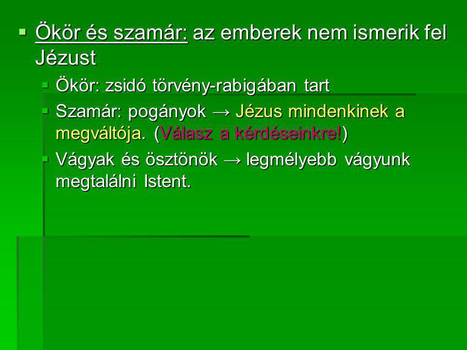  Ökör és szamár: az emberek nem ismerik fel Jézust  Ökör: zsidó törvény-rabigában tart  Szamár: pogányok → Jézus mindenkinek a megváltója. (Válasz