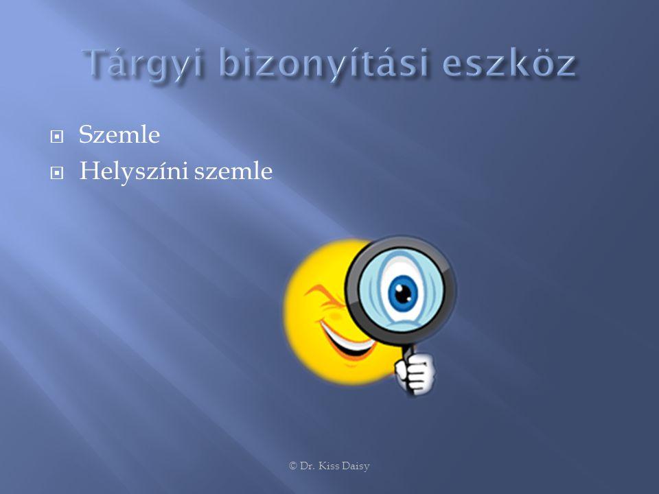  Szemle  Helyszíni szemle © Dr. Kiss Daisy