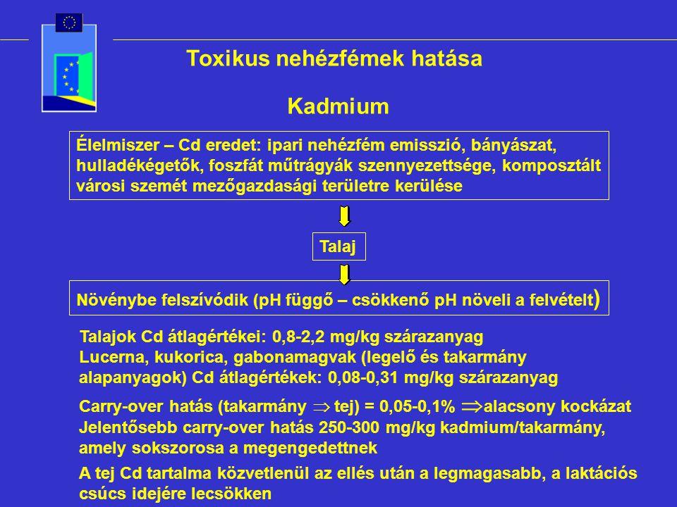 Toxikus nehézfémek hatása Kadmium Élelmiszer – Cd eredet: ipari nehézfém emisszió, bányászat, hulladékégetők, foszfát műtrágyák szennyezettsége, komposztált városi szemét mezőgazdasági területre kerülése Talaj Növénybe felszívódik (pH függő – csökkenő pH növeli a felvételt ) Talajok Cd átlagértékei: 0,8-2,2 mg/kg szárazanyag Lucerna, kukorica, gabonamagvak (legelő és takarmány alapanyagok) Cd átlagértékek: 0,08-0,31 mg/kg szárazanyag Carry-over hatás (takarmány  tej) = 0,05-0,1%  alacsony kockázat Jelentősebb carry-over hatás 250-300 mg/kg kadmium/takarmány, amely sokszorosa a megengedettnek A tej Cd tartalma közvetlenül az ellés után a legmagasabb, a laktációs csúcs idejére lecsökken