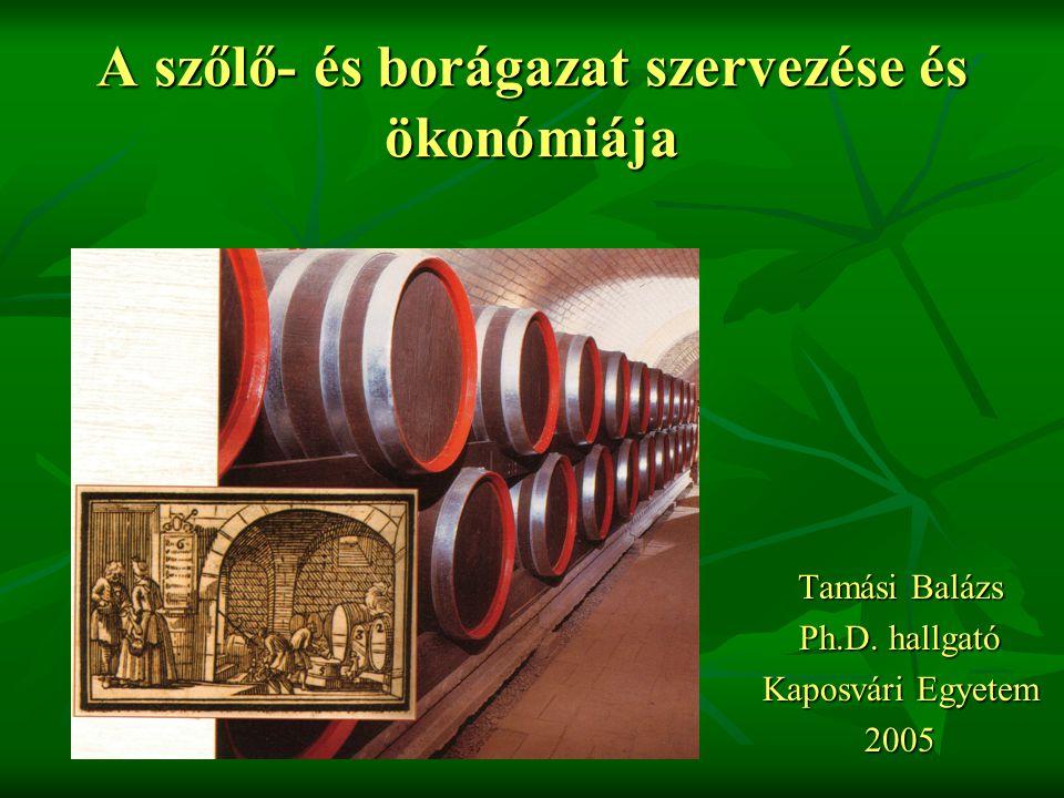 A szőlő – és borágazat jellemzése A szőlőterület csökkent az elmúlt években, sajnos sok helyen a mennyiségi termelés jellemző A fajtaösszetétel kedvezőtlen, nem a termőhelyre vonatkozó fajtapolitika van előtérben A korszerű (költséges) technológiák nem mindenhol terjedtek el, ahol pedig van, ott túlzott a mértéke A borászatok nagy adósságterheket göngyölítenek maguk előtt Sok apró parcellás terület van, amelyek gazdaságosan nem hasznosíthatóak A befektetett tőke megtérülése folyamatosan romlik