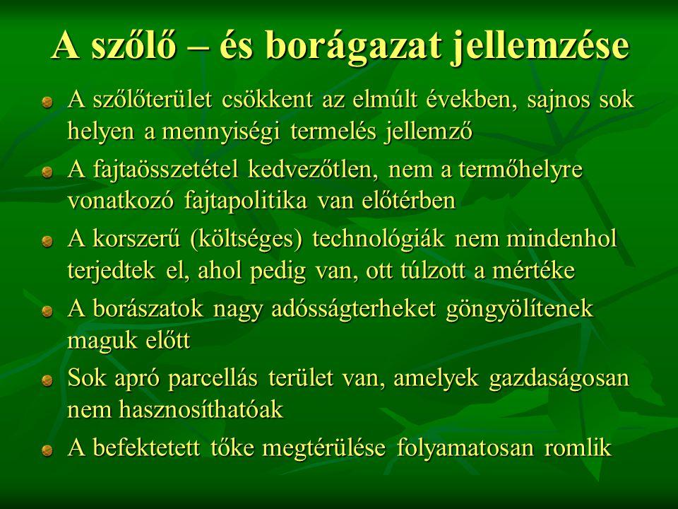Magyarország szőlőtermesztése A szőlő és borágazatnak Magyarországon tradicionális szerepe van, az ország termőterületének 1,3 %-án termesztenek szőlőt.