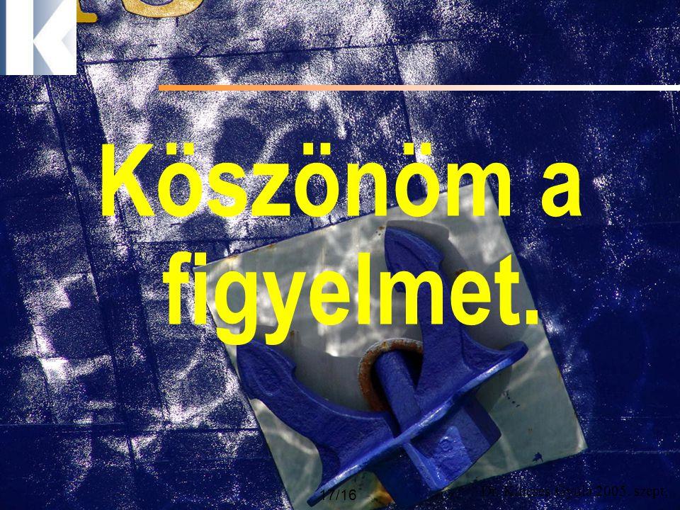 Dr. Kincses Gyula 2005. szept. 17/16 Köszönöm a figyelmet.