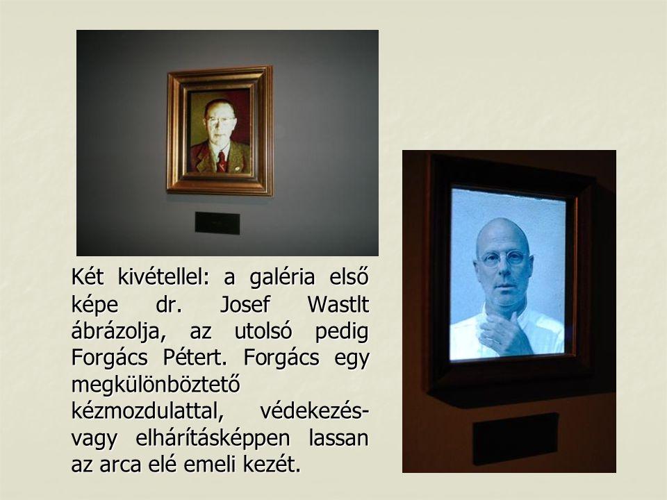 Két kivétellel: a galéria első képe dr. Josef Wastlt ábrázolja, az utolsó pedig Forgács Pétert. Forgács egy megkülönböztető kézmozdulattal, védekezés-