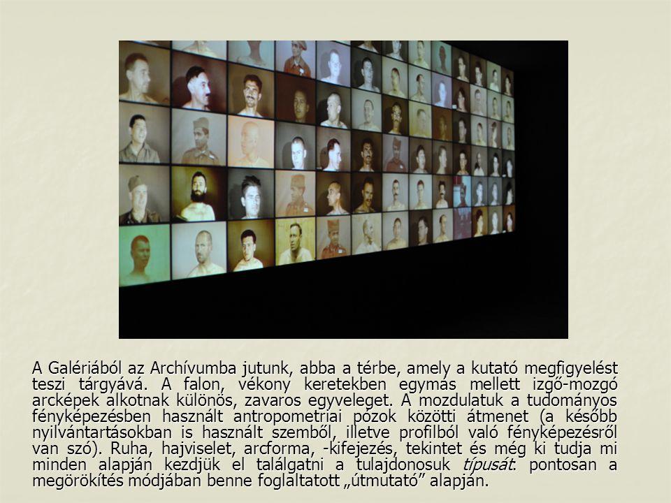 A Galériából az Archívumba jutunk, abba a térbe, amely a kutató megfigyelést teszi tárgyává. A falon, vékony keretekben egymás mellett izgő-mozgó arck