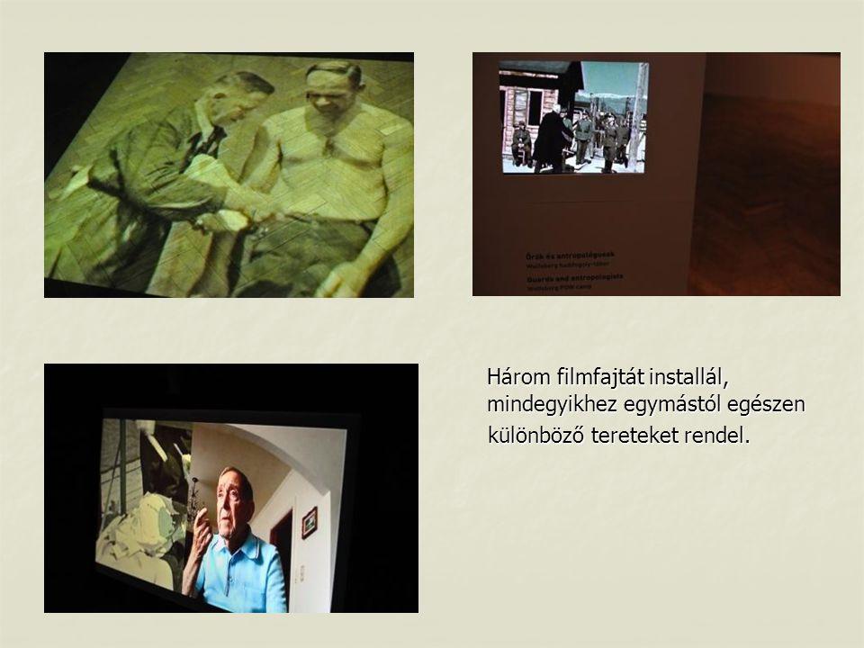 Három filmfajtát installál, mindegyikhez egymástól egészen különböző tereteket rendel.
