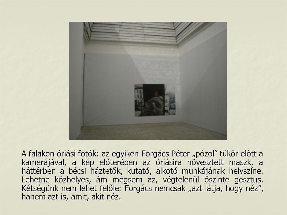 """A falakon óriási fotók: az egyiken Forgács Péter """"pózol tükör előtt a kamerájával, a kép előterében az óriásira növesztett maszk, a háttérben a bécsi háztetők, kutató, alkotó munkájának helyszíne."""