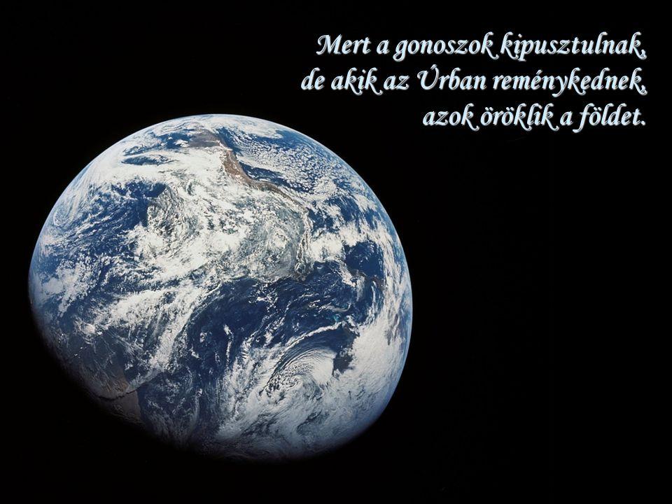 Mert a gonoszok kipusztulnak, de akik az Úrban reménykednek, azok öröklik a földet.