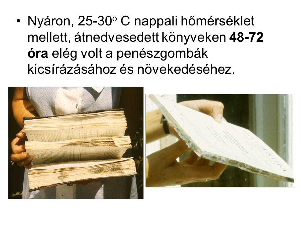 •Nyáron, 25-30 o C nappali hőmérséklet mellett, átnedvesedett könyveken 48-72 óra elég volt a penészgombák kicsírázásához és növekedéséhez.