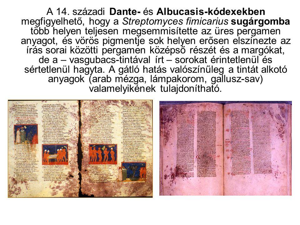 A 14. századi Dante- és Albucasis-kódexekben megfigyelhető, hogy a Streptomyces fimicarius sugárgomba több helyen teljesen megsemmisítette az üres per