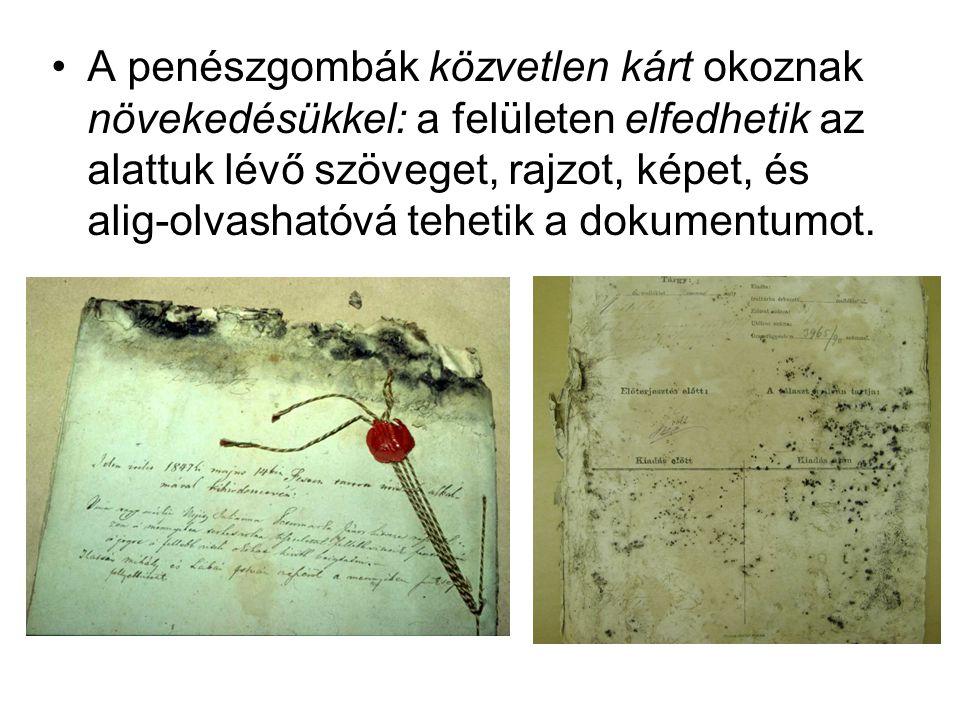 •A penészgombák közvetlen kárt okoznak növekedésükkel: a felületen elfedhetik az alattuk lévő szöveget, rajzot, képet, és alig-olvashatóvá tehetik a d