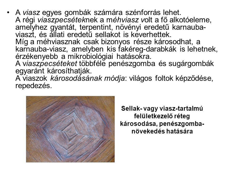 •A viasz egyes gombák számára szénforrás lehet. A régi viaszpecséteknek a méhviasz volt a fő alkotóeleme, amelyhez gyantát, terpentint, növényi eredet