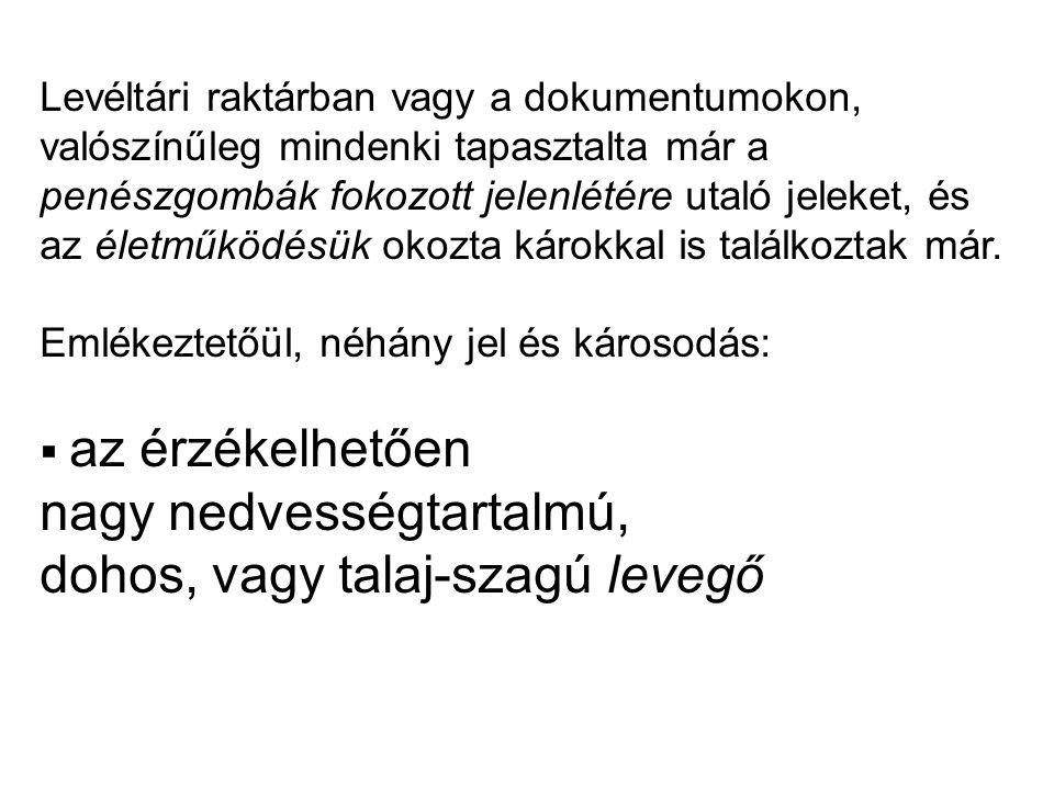 www.allomanyvedelem.hu