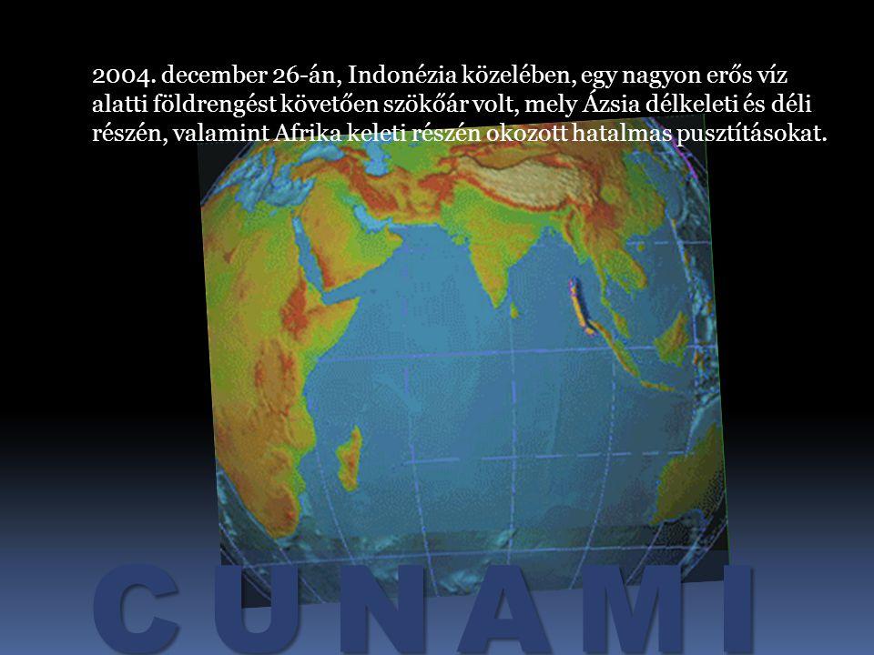 CUNAMI Indonézia, 2004