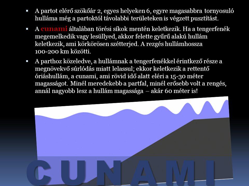 CUNAMI 2004. december 26-án, Indonézia közelében, egy nagyon erős víz alatti földrengést követően szökőár volt, mely Ázsia délkeleti és déli részén, v