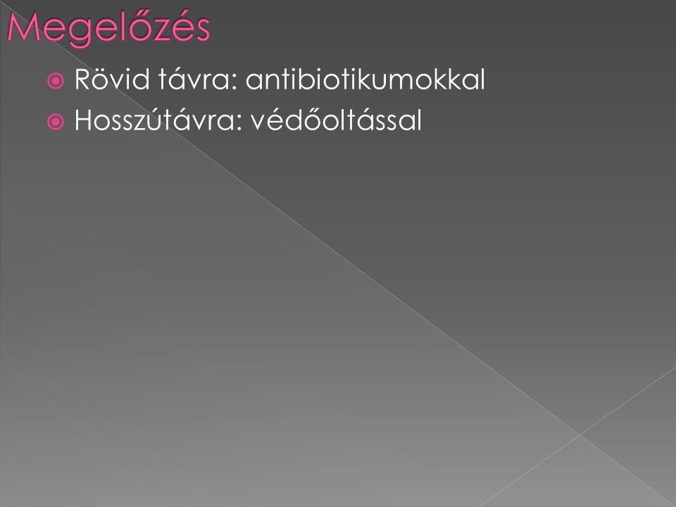  Rövid távra: antibiotikumokkal  Hosszútávra: védőoltással