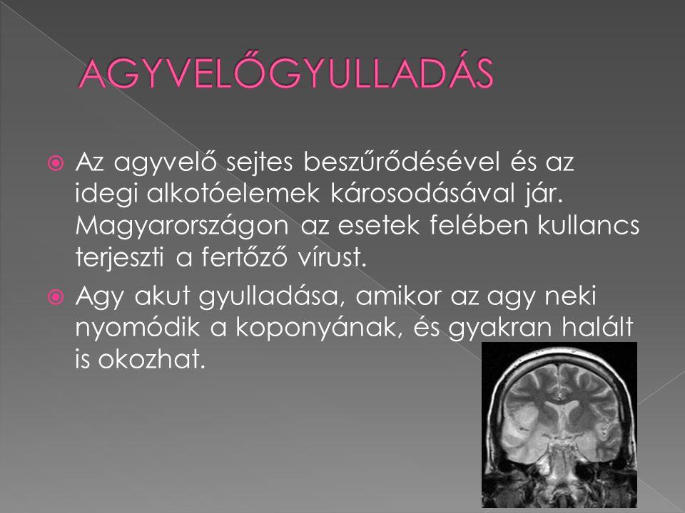  Az agyvelő sejtes beszűrődésével és az idegi alkotóelemek károsodásával jár. Magyarországon az esetek felében kullancs terjeszti a fertőző vírust. 