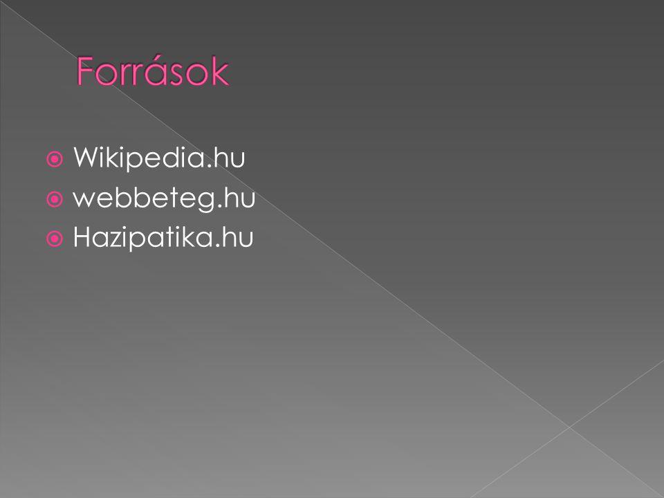  Wikipedia.hu  webbeteg.hu  Hazipatika.hu