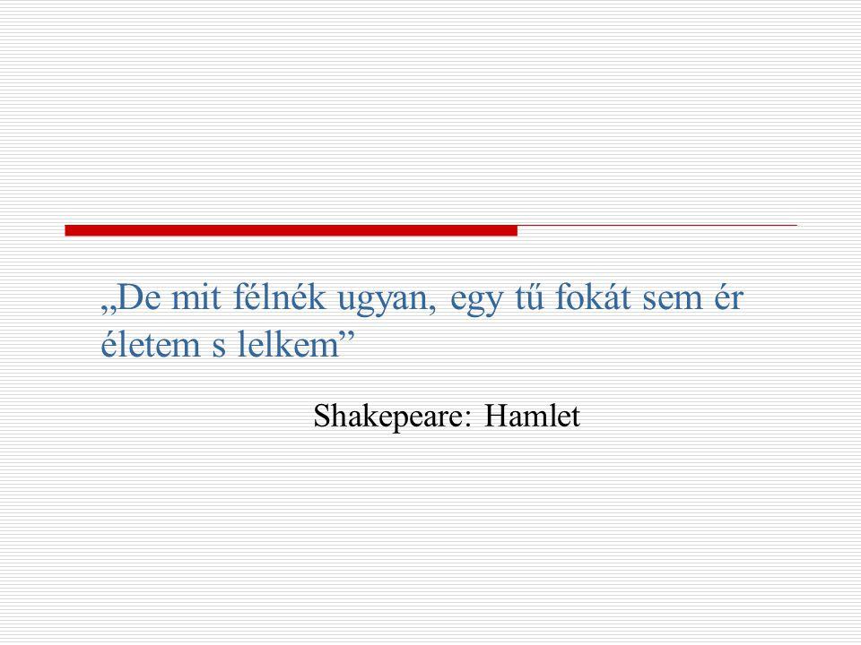 """""""De mit félnék ugyan, egy tű fokát sem ér életem s lelkem"""" Shakepeare: Hamlet"""