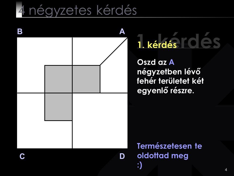 4 1. kérdés B A D C Természetesen te oldottad meg :) 4 négyzetes kérdés Oszd az A négyzetben lévő fehér területet két egyenlő részre.
